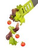 Salad Tongs stock photography