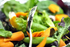 Salad and Tongs Stock Images