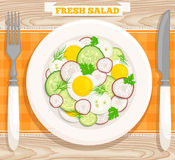 Salad top view. Vector illustration Royalty Free Stock Image