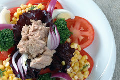 Salad tuna. Salad with tuna fish and broccoli Stock Image