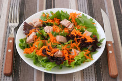 Salad with tuna Stock Images