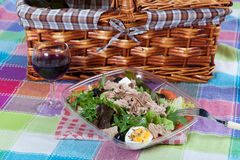 Salad with tuna and anchovies Royalty Free Stock Photo
