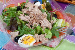 Salad with tuna and anchovies Stock Image