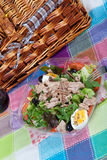 Salad with tuna and anchovies Royalty Free Stock Photos