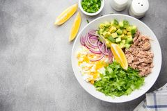 Salad with tuna, avocado, onion, egg and lemon. Spring healthy delicious lunch on light background. Salad with tuna, avocado, onion, egg and lemon. Spring stock images