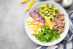 Salad with tuna, avocado, onion, egg and lemon. Spring healthy delicious lunch on light background. Salad with tuna, avocado, onion, egg and lemon. Spring royalty free stock image