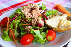 Salad With Tuna. Salad With Tuna for Dinner Stock Image