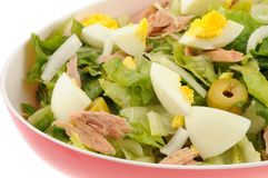 Salad with tuna and egg isolated Royalty Free Stock Images