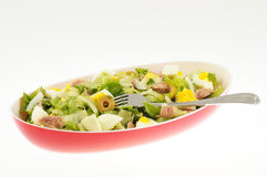 Salad with tuna and egg isolated Stock Images