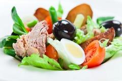 Salad from  tuna Royalty Free Stock Photos