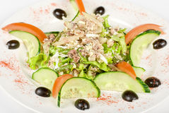 Salad of tuna fish Stock Photography