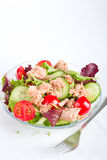 Salad with tuna fish Royalty Free Stock Photography