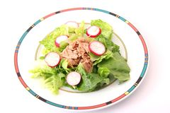 Salad with tuna fish Royalty Free Stock Photos