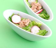 Salad with tuna fish Stock Image