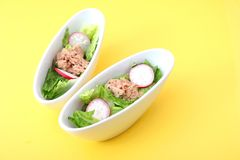 Salad with tuna fish Royalty Free Stock Images