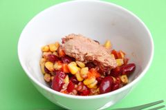 Salad with tuna fish Royalty Free Stock Photos