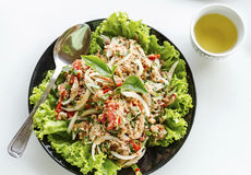 Salad of tuna fish Royalty Free Stock Image