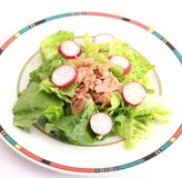 Salad with tuna fish Stock Photography