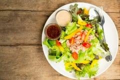 Salad tuna meal Stock Images