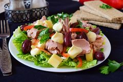 Salad with tuna, olives, cheese, paprika, lettuce and mayonnaise. Salad with tuna, olives, cheese, paprika lettuce and mayonnaise Royalty Free Stock Photos