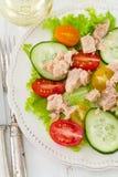 Salad with tuna Royalty Free Stock Photo