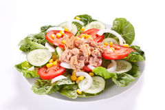 Salad tuna tomato corn and onion Royalty Free Stock Photo