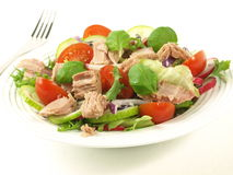Salad with tuna, tomatoes, basil and onion. Stock Photos