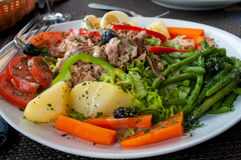 Salad with tuna and vegetable. Tuna salad, healthy, simple and delicious. Mixed green  tomatoes potatos carrots beans Stock Image