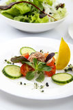 Salad with tunny and vegetable Royalty Free Stock Photos