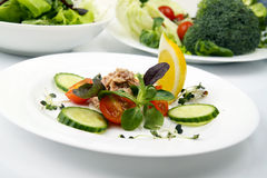 Salad with tunny and vegetable Royalty Free Stock Image