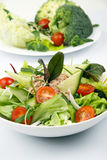 Salad with tunny and vegetable Royalty Free Stock Photography
