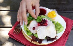 Salad with turkey Stock Photography