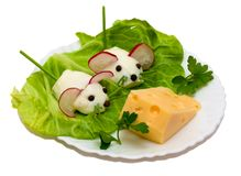 Salad - two mouse and cheese Stock Photography