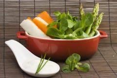 Salad and tzatziki Royalty Free Stock Photos