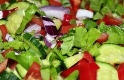 Salad. Vegetable salad. Homemade salad. Tomato Stock Images