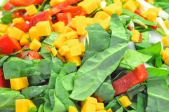 Salad. Vegetable salad and mixed fruit Royalty Free Stock Images