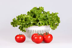 Salad. Vegetable salad tomatoes curly salad Royalty Free Stock Photography