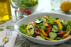 Salad from vegetables Stock Photos