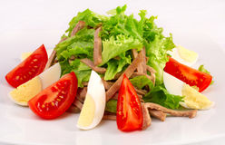 Salad with vegetables and beef Royalty Free Stock Photos