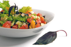 Salad of vegetables with cheese Royalty Free Stock Image