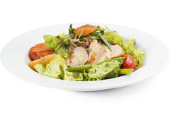 Salad with vegetables and chicken. Salad with grilled chicken, Mandarin orange, tomato, radish, cabbage, carrots and greens Royalty Free Stock Image