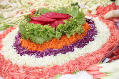 Salad Vegetables. Salad with colours in Lahore Pakistan royalty free stock images