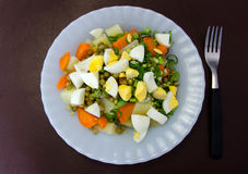 Salad of vegetables. Dish with salad vegetables and fork Royalty Free Stock Images