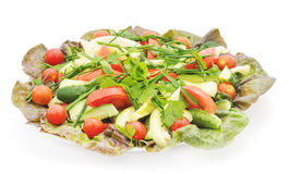 Salad vegetables. Royalty Free Stock Image