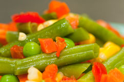 Salad vegetables and fruit Royalty Free Stock Photography