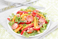 Salad with vegetables and greens. Royalty Free Stock Images