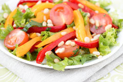 Salad with vegetables and greens. Horizontal photo. Stock Images