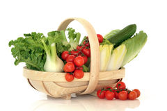 Salad Vegetables In A Basket Royalty Free Stock Photos