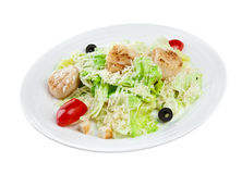 Salad from vegetables and meat Royalty Free Stock Photography