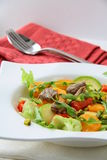 Salad with vegetables and meat grilled Stock Photos